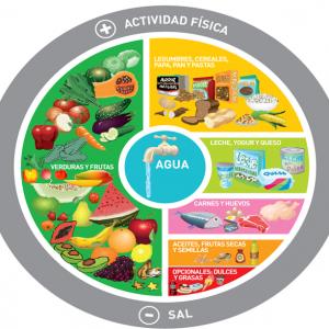 La importancia de garantizar la Seguridad Alimentaria y Nutricional en la población en el contexto de la pandemia de COVID-19 en Argentina